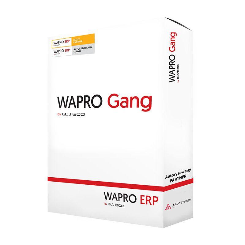 Oprogramowanie Asseco WAPRO GANG